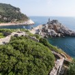 Landscape with the church of St. Peter in Porto Venere, Italy — Stock Photo #69454353