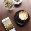 CHIANG MAI, THAILAND - APRIL 22, 2015: Log in page Twitter application using Apple iPhone 6 in coffee shop. Twitter is largest and most popular social networking site in the world. — Stock Photo #77120723