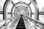 The Escalator Of The Floating Garden Observatory black and white — Stock Photo