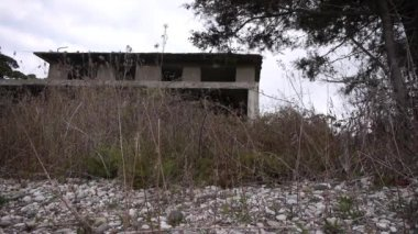 Abandoned Building in Bush at Sea Shoreline — Stock Video