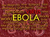 Ebola concept word cloud background — 图库照片