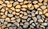 Tas de bûches de bois pour l'hiver — Photo