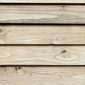 The natural wood texture with natural background — ストック写真