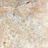 Old stucco wall background or texture — Stock Photo