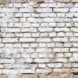 Background texture of a old white brick wall — Stock Photo #72459739