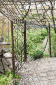 Oman garden Saiq Plateau — Stock Photo