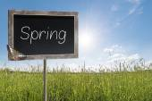 Chalkboard with text Spring — Stock Photo