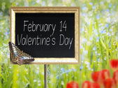 Chalkboard with text February 14 Valentines Day — Stock Photo