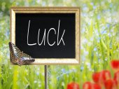 Chalkboard with text Luck — Stock Photo