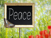 Chalkboard with text Peace — Stock Photo