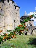 Carcassonne fortress — Stock Photo