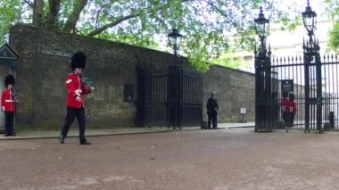 Changing of the Guards in London — Stok video