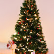Lighted Christmas tree with presents underneath in living room  — Foto de Stock   #55982435
