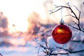 Christmas ball hanging on a branch in winter — Stock Photo