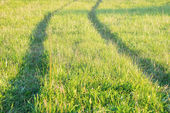 Track of tractor in the green grass — Stock Photo