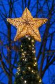 Christmas tree with a yellow star in top — Stock Photo