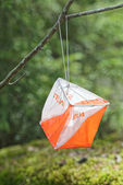 Closeup of Orienteering marker in the forest — Stock Photo