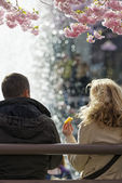 Couple eating during lunch at the Cherry blooming in Kungstradga — Stock Photo