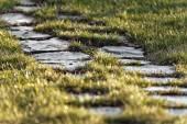 Caminho de pedra na grama verde com pequena profundidade de campo — Fotografia Stock