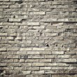 Background of old vintage brick wall in a vintage look — Stock Photo #72538801