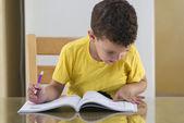Young Schoolboy Studying Hard — Fotografia Stock