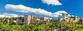 Panorama of the famous Alhambra palace in Granada, Andalusia, Spain. — Stock Photo