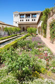 Fountain and gardens in Alhambra palace, Granada, Andalusia, Spain. — Stock Photo