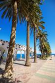 Boulevar with palm trees in Nerja, Malaga, Andalusia, Spain. — Stock Photo