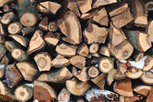 The pile of firewood — Stock Photo