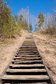 Деревянные лестницы в гору — Стоковое фото