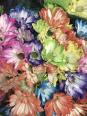 Smart phone image of different colored daisies in a bunch — Stock Photo