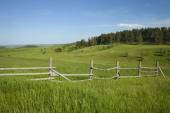 Rail fence and hills with pines in Montana — Foto Stock
