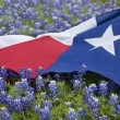 Texas flag among bluebonnet flowers on bright spring day — Stock Photo #69314103
