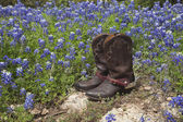 Cowboy boots with spurs in a field of Texas bluebonnets — Stock Photo
