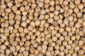 White pepper seeds background — Stock Photo