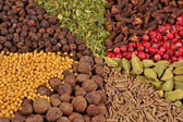 Heap of various kinds of spices — Stock Photo