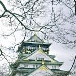 Osaka, Japan - city in the region of Kansai. Osaka-jo castle. — Stock Photo #55168647