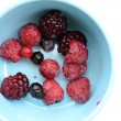 Close up of mixed berries fruit — Stock Photo #72602137