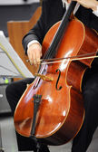 Close up of a cellist playing a cello — ストック写真