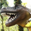 Large Head of an Allosaurus Dinosaur at the Forest — Stock Photo #70937721