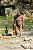 Australopithecus Afarensis Statue at Rocky Ground — Stockfoto