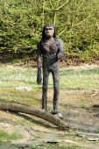 Model of Proconsul Africanus in Theme Park — Stock Photo