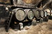Interior of an old wine cellar — Photo