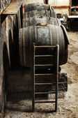 Ladder against an oak wine barrel — Stock Photo