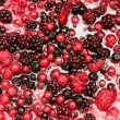 Mixture of autumn berries for flavouring ice cream — Stock Photo #73206363