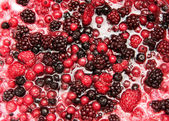 Mixture of autumn berries for flavouring ice cream — Stock Photo