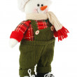 Christmas decoration snowman — Stock Photo #59639541