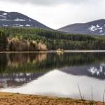 Loch Morlich — Stock Photo #71840163