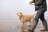 Man walking dog in Scottish Loch — Stock Photo