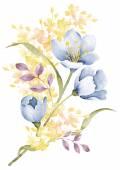 Flor ilustración acuarela — Foto de Stock